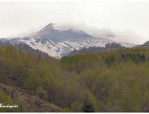 Un grand volcan toujours en activité, l'Etna