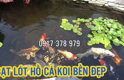 Hồ Cá Koi Lót Bạt Nhựa CHống Thấm, Bạt Nuôi Cá KOI An Toàn Đẹp