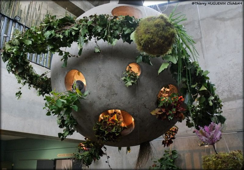 L'expo florale - Agrocampus Ouest Angers - Edition 2018!
