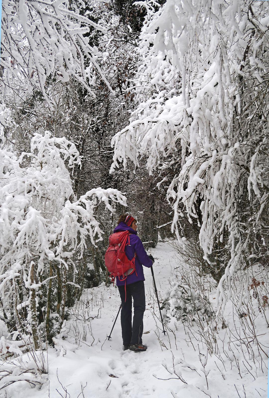 Le parcours de l'arête se termine en forêt, magique avec le givre.