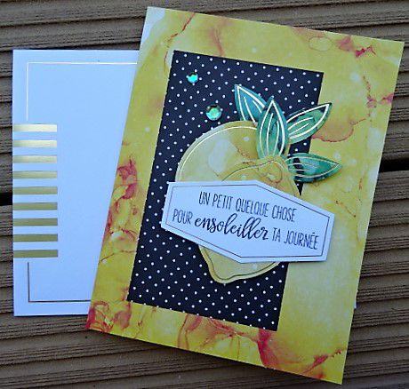 Collection de kits chez Stampin Up.
