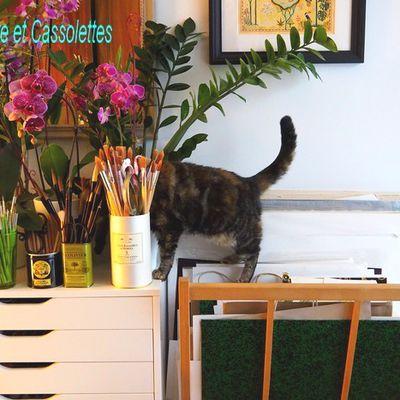 Le Chat (quantique) qui aimait les (poils de) pinceaux...