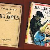 Olivier Séchan : un hommage, deux romans - Le blog de Claude LE NOCHER