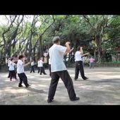 Vu sur le Web ; 2ème duan du yangjia michuan par Li Shujin - ASSOCIATION LE BAMBOU