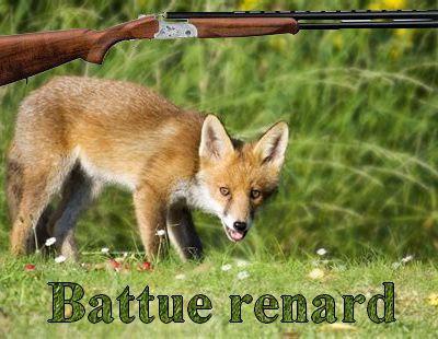Battue aux renards sur Maurs et Rouziers