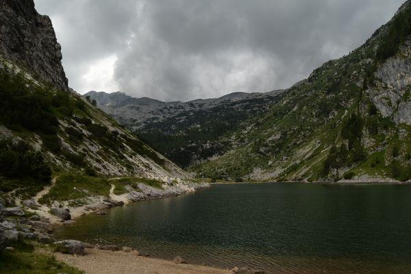 Dans la serre : le poivron alpina qui vient de Slovénie
