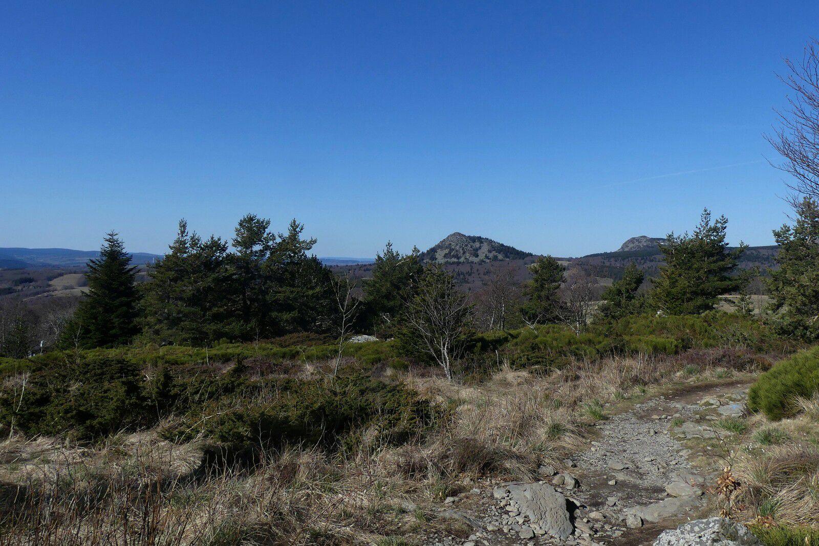 Mont Gerbier de Jonc - Suc de la Lauzière