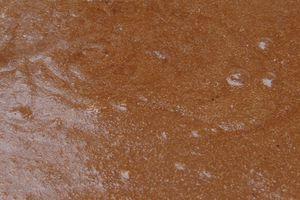 Divine mousse au chocolat de Joel Robuchon