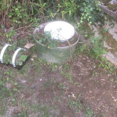 ou l'art de tenter d'upcycler des bassines