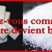 Savez vous comment est obtenu le sucre blanc ? - MOINS de BIENS PLUS de LIENS