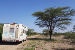 "Premier ""safari"" en camping-car"