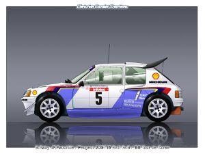 Profils Rallycars PEUGEOT