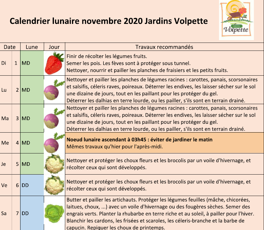 Calendrier lunaire novembre 2020
