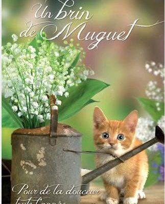 Image muguets