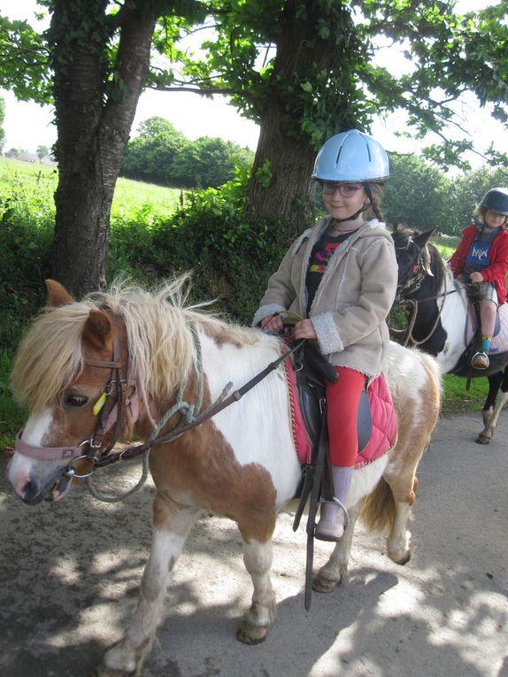 Au programme de cette 6ème séance : visite de la ferme pédagogique et balade aux abords du centre équestre (le terrain étant détrempé, nous n'avons pu aller dans les bois comme prévu).