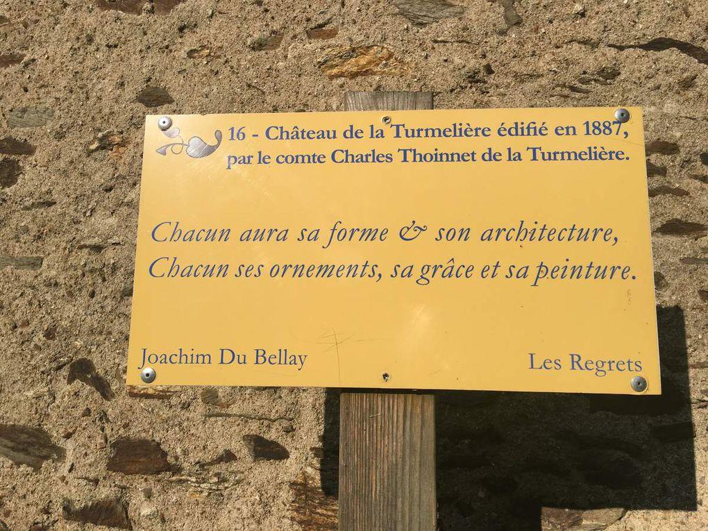 Liré - LES RUINES DE LA MAISON NATALE DE JOACHIM DU BELLAY
