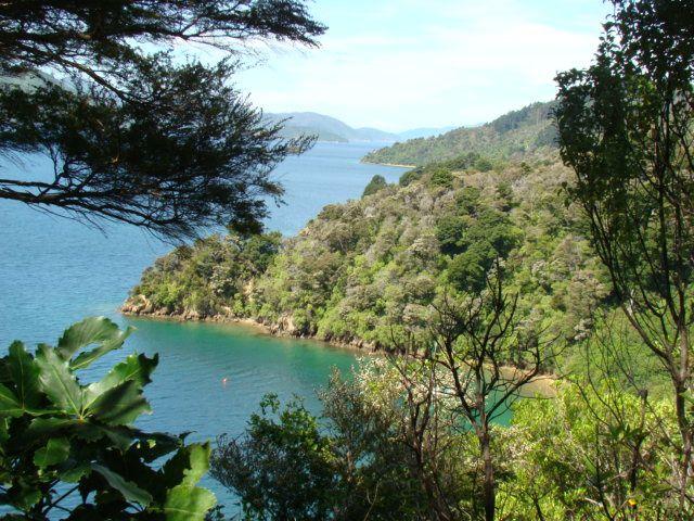 Album - Nouvelle-Zelande