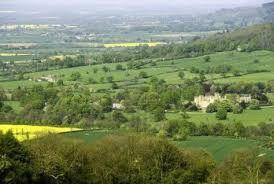 Des vignobles dans le nord de l'Angleterre