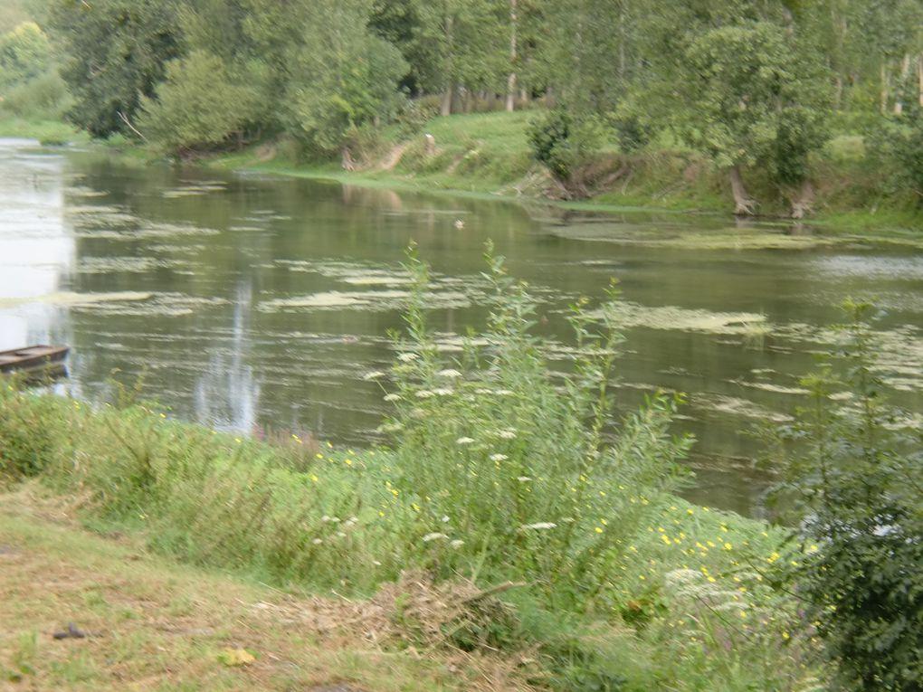 Une sacrée randonnée le long de la Loire,de Thésée,petit village du bord de Cher jusqu'à Vertou,belle commune du vignoble Nantais.