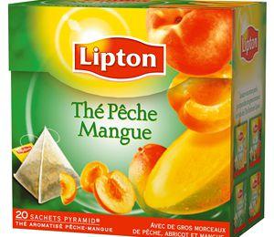 Lipton indian spice