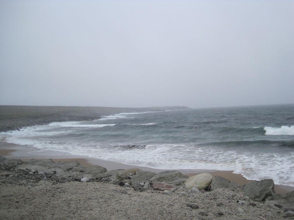 2010 - Irlande-1