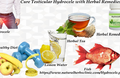 Cure Testicular Hydrocele with Herbs