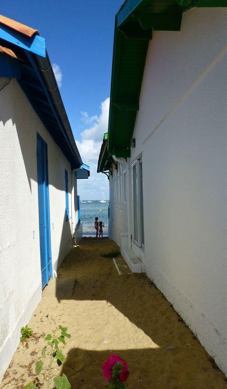 Album - Presqu'île du Cap Ferret