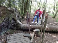 Paimpont, Bretagne en camping-car