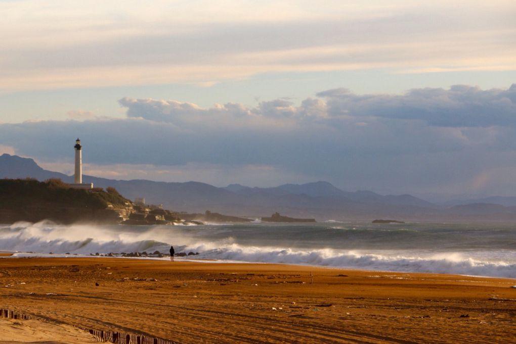 Résidus de grande marée sur la côte Basque