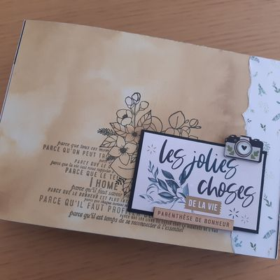 "Album ""Les jolies choses"""