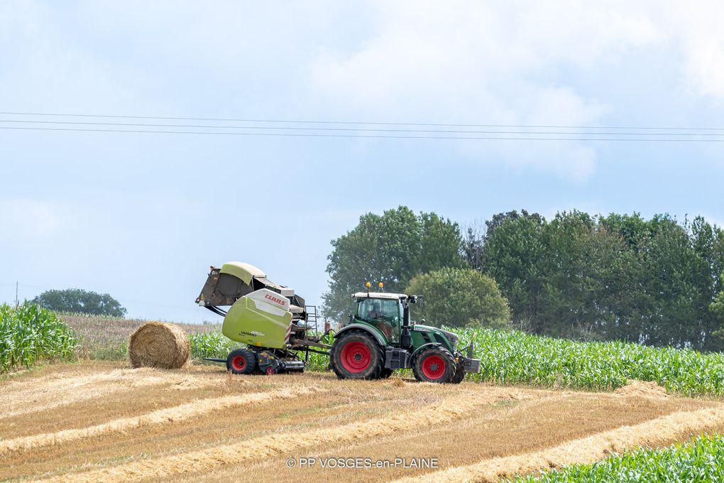 Les activités agricoles de l'été sur les hauteurs de MADONNE ET LAMEREY