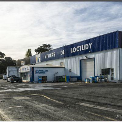 29 - Loctudy - Finistère