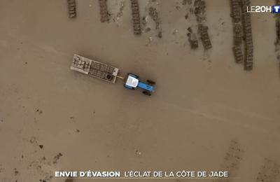 À la découverte de la Côte de Jade - Le journal de 20h | TF1
