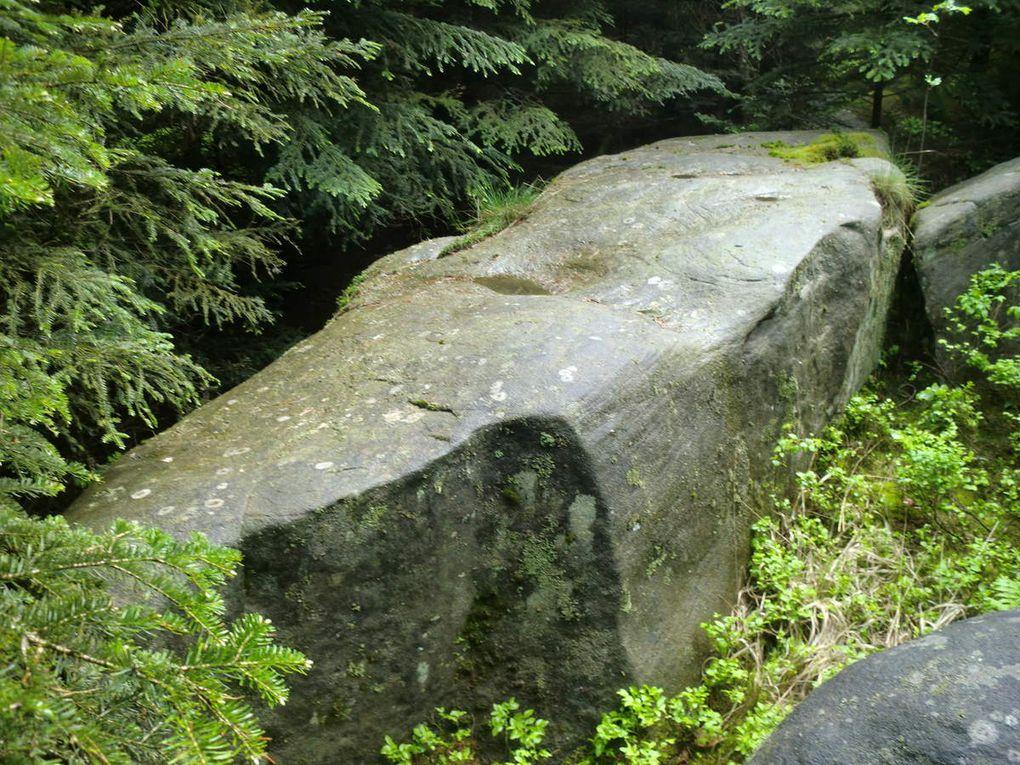 Des mégalithes couchés de part et d'autre du sentier témoignent d'une intense activité lié à un culte ancestral. (Photos de mai 2014)