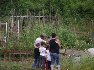 Section Chana les champs : les enfants de l'école primaire Saint-Charles visitent les jardins.
