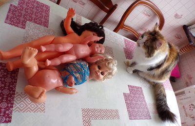 toilette  pour quelques poupées de Capucine