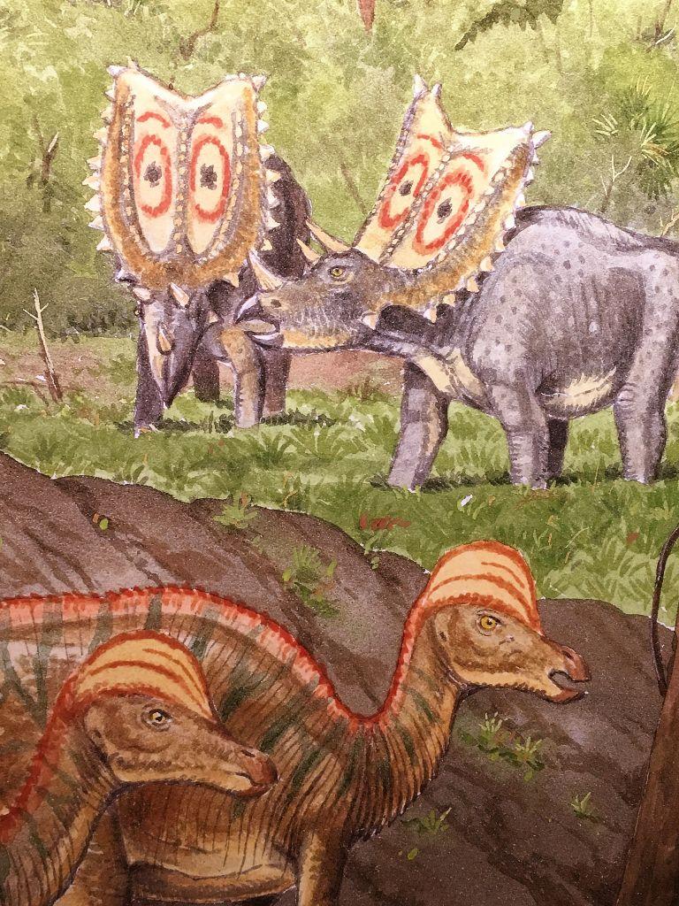 Palais découverte : Dinosaures 8eme