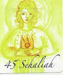 Journal de Sehaliah
