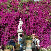 Seville - Jardin de la Casa de Pilatos - LANKAART