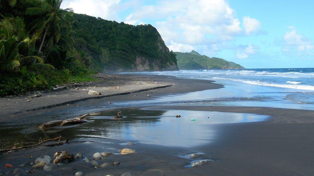 """Au départ de Pointe-à-Pitre, dans une mer souvent remuante, on arrive le long de la côte ouest de la Dominique. Souvent y accostent des bateaux de croisière américains. Près de la capitale, l'eau chaude des sources volcaniques est amenée jusqu'à de vieilles baignoires. La côte à l'est """" au vent """" est peu visitée, beaucoup plus sauvage. Retour dans un petit avion  jusqu'à Pointe-à-Pitre."""