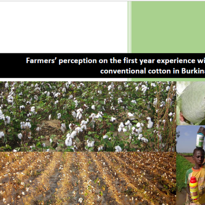 Farmers' perception on the first year experience withfull conventional cotton in Burkina Faso (2016-2017)