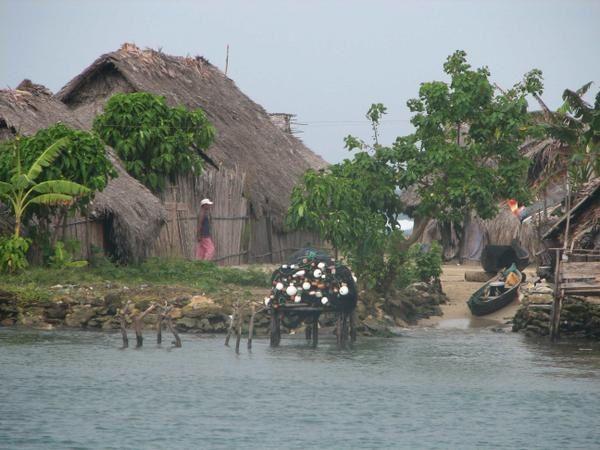 <p>les photos sont class&eacute;es dans un ordre est ouest d aligandi a tupsuit </p> <p>un fichier reprend les photos de la fete nationlae de tigre</p>