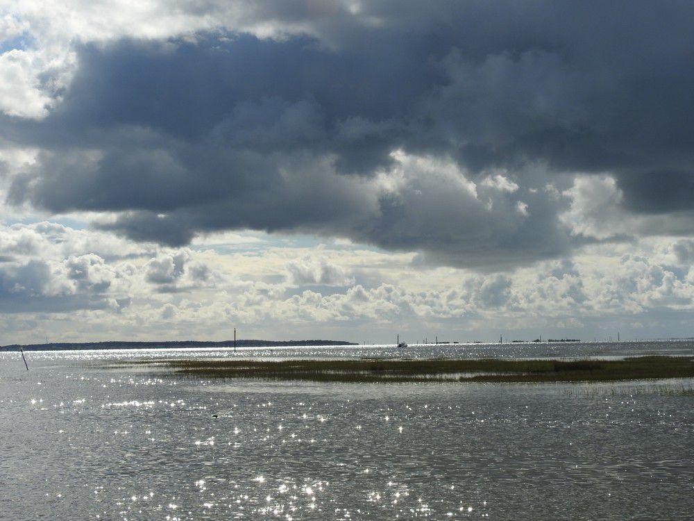 Balade au bord du Bassin d'Arcachon, juste avant l'averse...