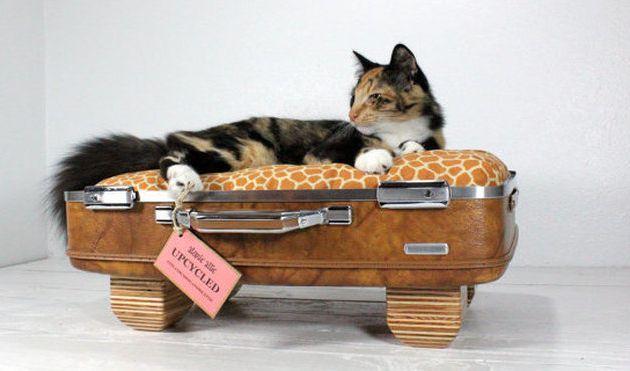 Petit lit douillet pour chat