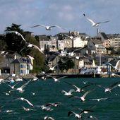 art 051, Bretagne nostalgique, Brest, Camaret, Port-Launay, Chateaulin, Douarnenez, Port-Rhu, Sein, Finistère, photos