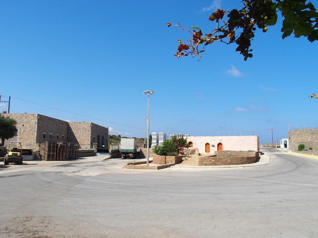 les bâtiments annexes ...vin, huile d'olive ...