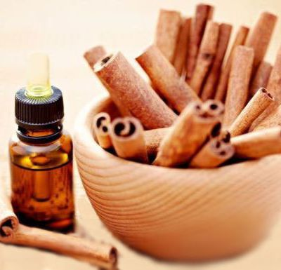 Do You Know How Cinnamon Bark Spice Oils are Beneficial for You?