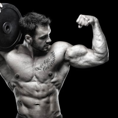 Beginners Guide for Muscle Building Tips