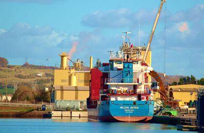 La photo du Lundi 30 Novembre 2020. Cargo Wilson Gdyma