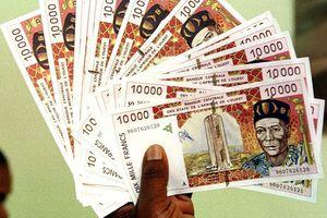 Le Franc CFA au cœur du débat public de l'Afrique francophone